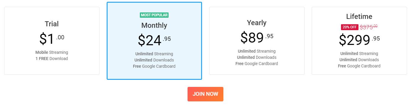 BadoinkVR.com Prices